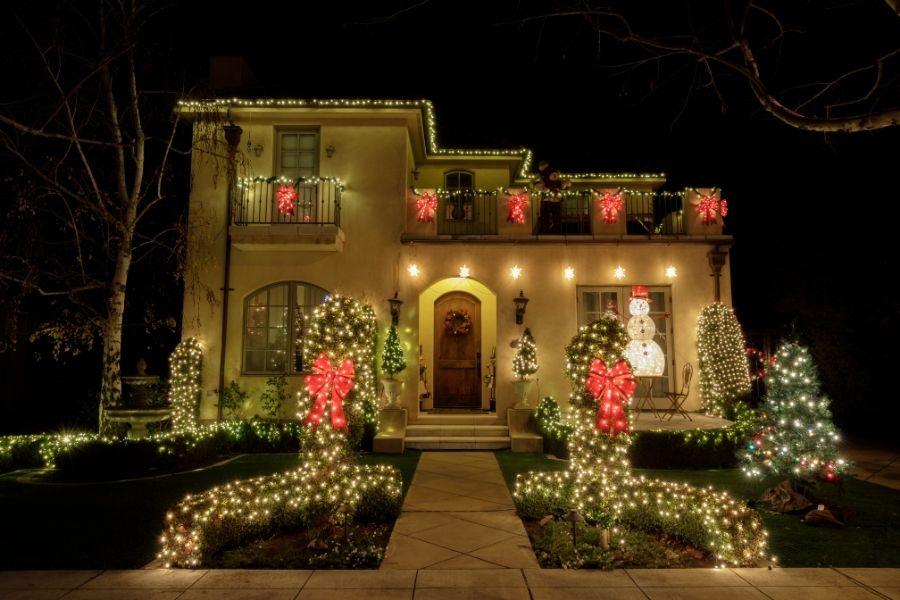 Outdoor Christmas Lights Ideas for Trees & Bushes