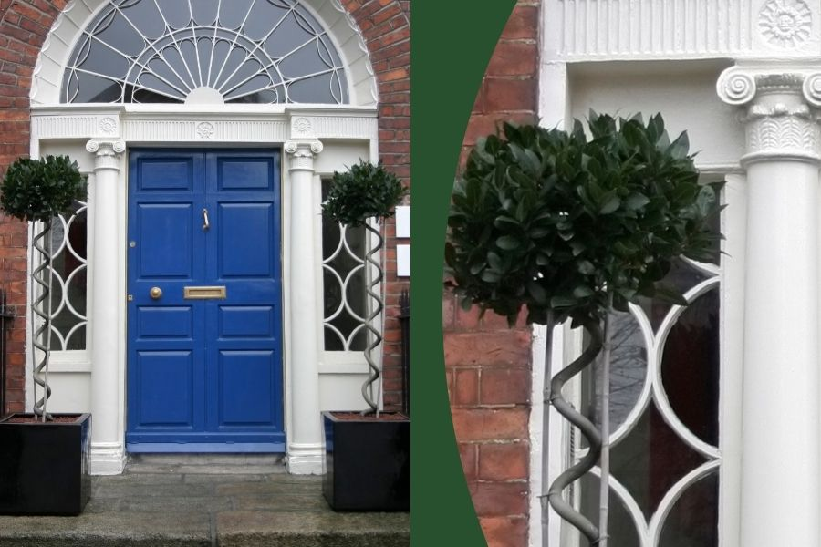 front door ideas tree planter bay tree